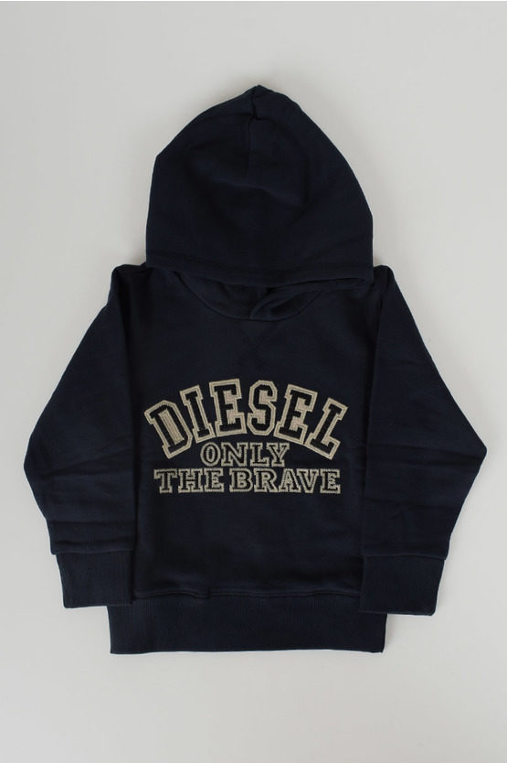 Embroidered and Hoodie Sweatshirt